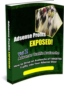 Adsense Profits Exposed 2