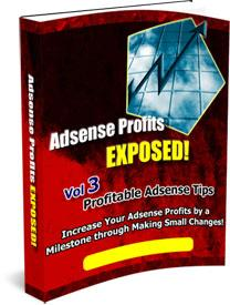 Adsense Profits Exposed 3